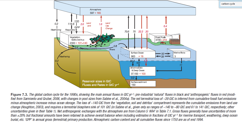Carbon Cycle Feedback